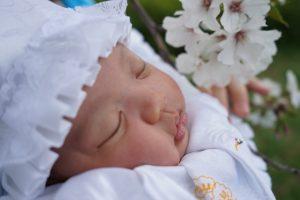 お宮参りで着る着物は【赤ちゃん本舗】で揃う?レンタルor購入、どっちがおすすめ?